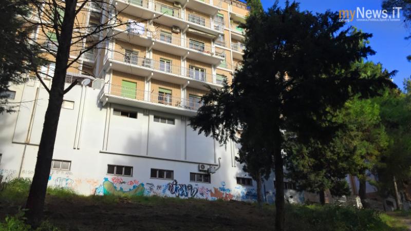 Alberi Parco2017