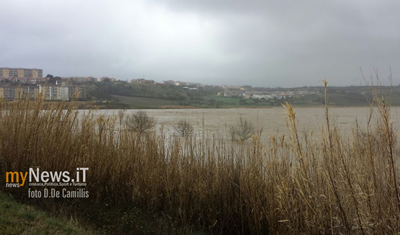 La zona inondata dal torrente Sinarca (video e galleria fotografica)