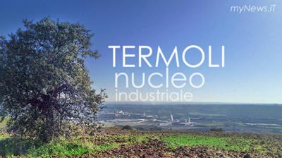 TermoNucleo