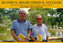 Enzo Gallo e Aldo Camporeale