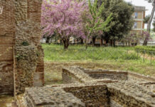 Villa Zappone parco archeologico Larino